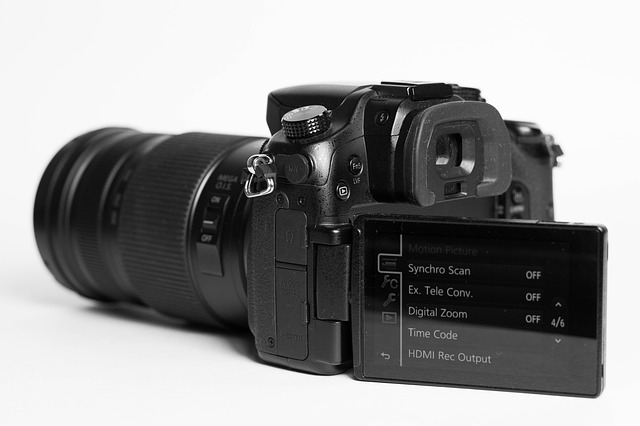 How Does Mirrorless Camera Work