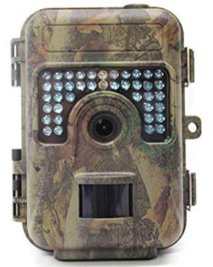 Hunting Camera for Deer